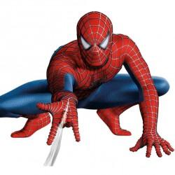 Spider Man Örümcek Ağı Yenilebilir Pasta Resim Baskısı