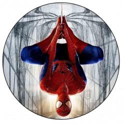 Ters Spider Man Yuvarlak Yenilebilir Pasta Resim Baskısı